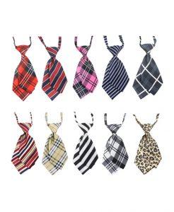 cà vạt nữ đẹp rẻ